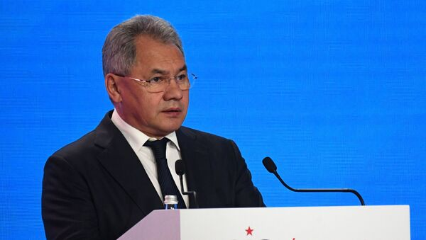 Sergey Shoigu  - Sputnik Việt Nam
