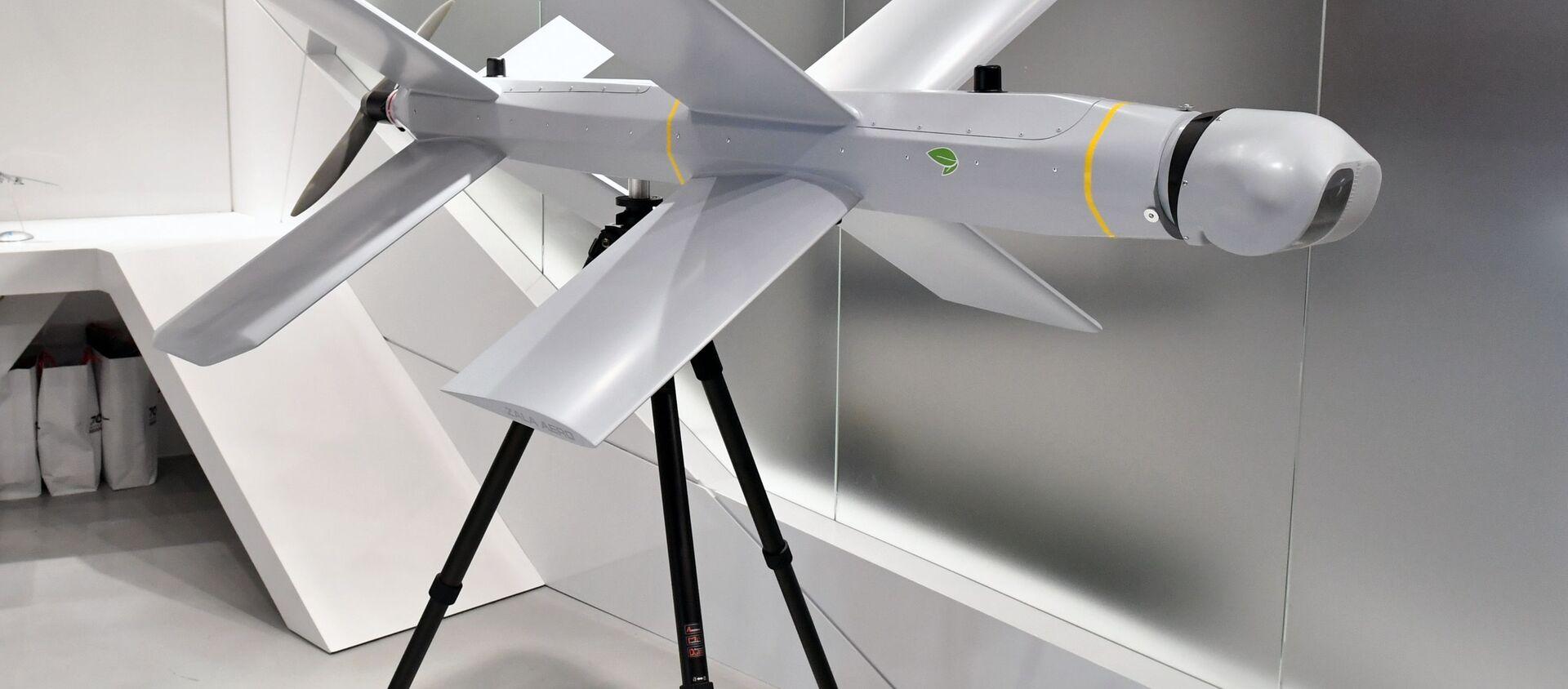 """Máy bay không người lái cảm tử bay vòng tròn ZALA Lantset tại khu trưng bày của tập đoàn """"Kalashnikov"""". - Sputnik Việt Nam, 1920, 25.08.2021"""