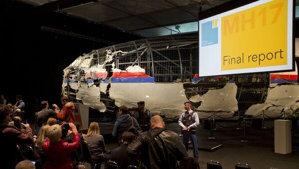 Khôi phục một phần vỏ máy bay Boeing 777 của Malaysia (chuyến bay MH17) để nghiên cứu bối cảnh vụ rơi máy bay ở miền Đông Ukraina ngày 17 tháng Bảy 2014 - Căn cứ quân sự Gilze-Reyen của Hà Lan - Sputnik Việt Nam