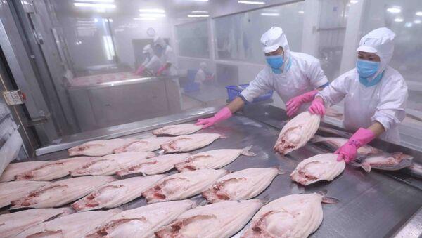 Thị trường EU hiện đang là thị trường xuất khẩu thủy sản đứng thứ hai của Việt Nam, chiếm trọng 17% tổng giá trị xuất khẩu thủy sản.  - Sputnik Việt Nam