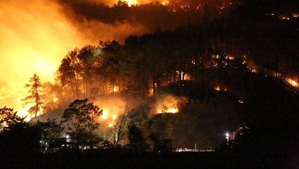 Cháy rừng núi Nầm (Hương Sơn, Hà Tĩnh) - Sputnik Việt Nam