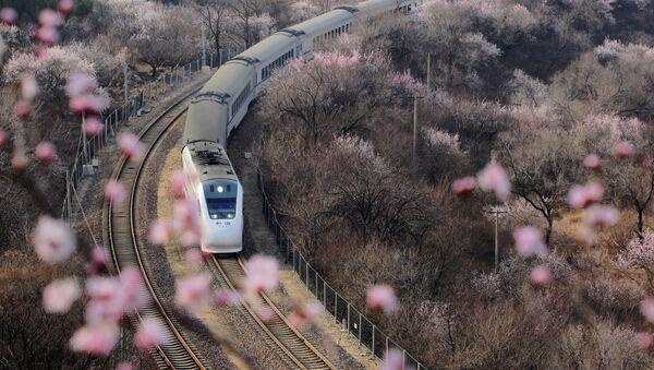 Tàu cao tốc đi ngang qua những rặng hoa ở Vạn Lý Trường Thành, Bắc Kinh - Sputnik Việt Nam