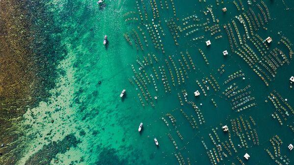 Hệ thống lồng nuôi tôm hùm nhìn từ trên cao của người dân ở địa danh Hòn Yến, huyện Tuy An.  - Sputnik Việt Nam
