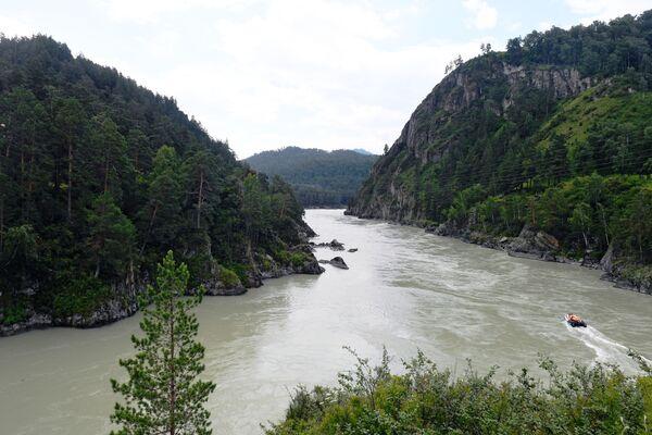 Sông Katun ở huyện Chemalsky, Cộng hòa Altai - Sputnik Việt Nam