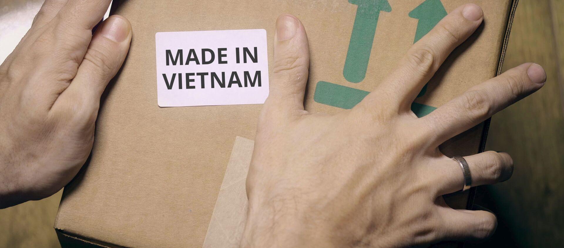 Made in Vietnam - Sputnik Việt Nam, 1920, 02.08.2019