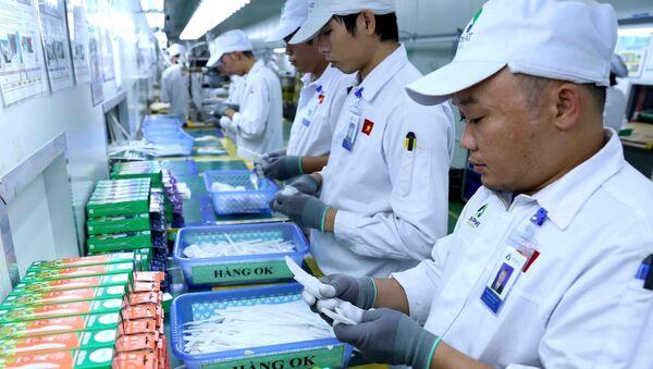Kiểm tra, đóng gói sản phẩm ống hút, dao, thìa, nĩa bằng bột ngô thân thiện với môi trường tại nhà máy của công ty.  - Sputnik Việt Nam
