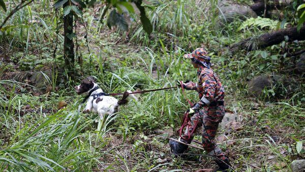 Cảnh sát Malaysia với chó nghiệp vụ đang tìm kiếm Nora Quoirin - Sputnik Việt Nam