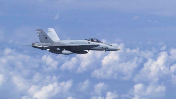 Máy bay chiến đấu F-18 của NATO đã cố gắng tiếp cận chuyên cơ của Bộ trưởng Quốc phòng Nga Sergei Shoigu  - Sputnik Việt Nam