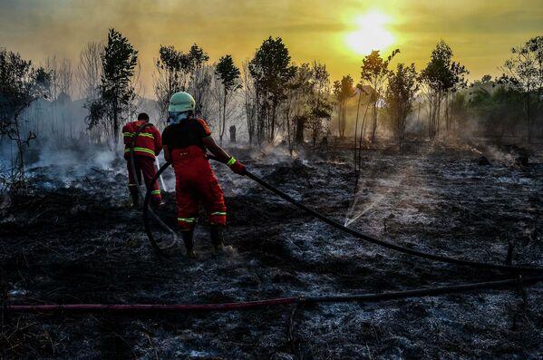 Dập tắt đám cháy rừng ở Sumatra, Indonesia - Sputnik Việt Nam