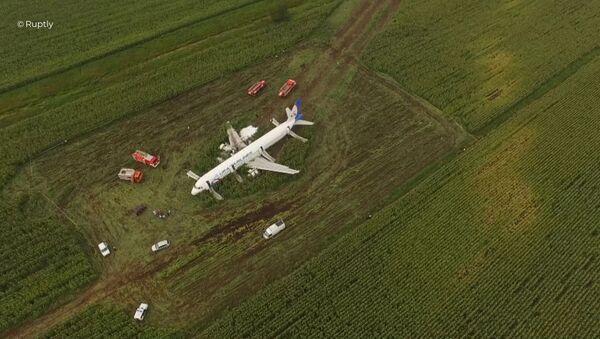 Máy bay của A-321 Ural Airlines hạ cánh khẩn cấp  - Sputnik Việt Nam
