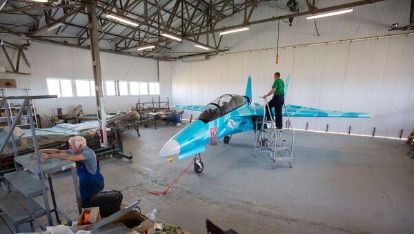 Chiếc máy bay Dreamer PJ-II  - Sputnik Việt Nam