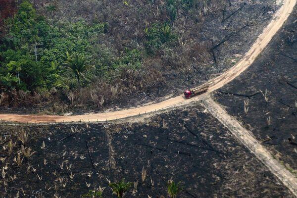 Cảnh rừng Amazon đang cháy nhìn từ trên cao - Sputnik Việt Nam