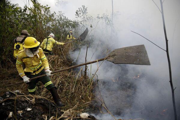 Lính cứu hỏa dập tắt đám cháy gần thành phố Porto Velho ở Brazil - Sputnik Việt Nam