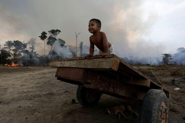 Đứa trẻ chơi đùa trên nền đám cháy rừng ở Amazon - Sputnik Việt Nam