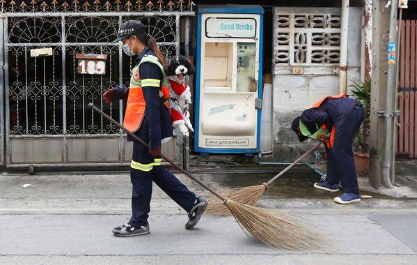 Nhân viên vệ sinh môi trường mang mặt nạ với chổi và chú cún poodle ở Bangkok, Thái Lan - Sputnik Việt Nam