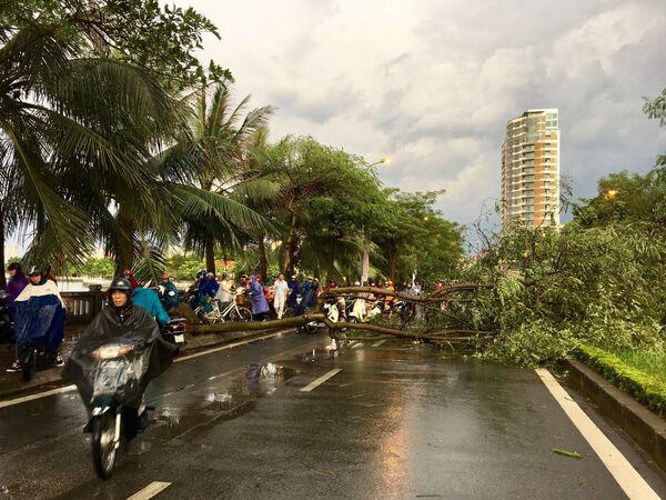 Cơn giông kèm theo mưa lớn và gió giật mạnh vừa xảy ra cuối giờ chiều 29/8/2019 đã làm nhiều cây trên một số tuyến phố bị đổ gãy, gây khó khăn cho người và phương tiện tham gia giao thông vào đúng giờ tan tầm - Sputnik Việt Nam