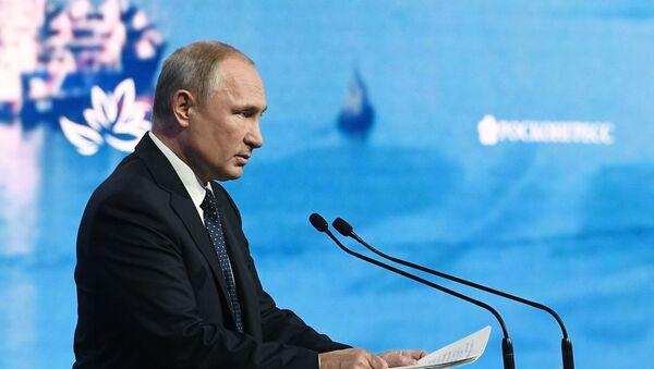 Vladimir Putin tham gia Diễn đàn kinh tế Đông - 2019  - Sputnik Việt Nam