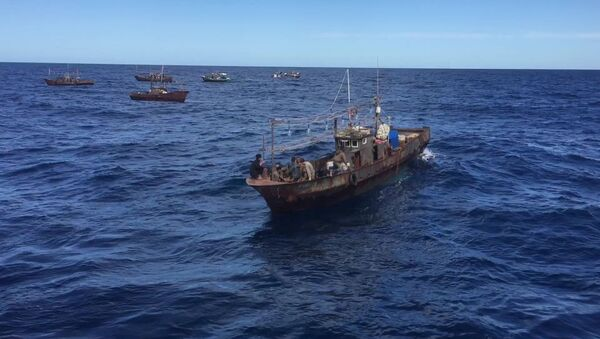 Lực lượng biên phòng Nga bắt giữ tàu chở những kẻ săn trộm của Bắc Triều Tiên - Sputnik Việt Nam