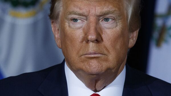 Tổng thống Mỹ Donald Trump - Sputnik Việt Nam