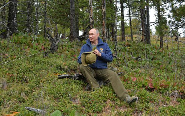 Tổng thống Liên bang Nga Vladimir Putin tại rừng taiga ở Siberia - Sputnik Việt Nam