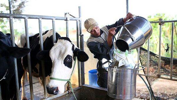 Việt Nam đặt mục tiêu năm 2020, xuất khẩu sữa sang Trung Quốc sẽ tăng từ 120 triệu USD lên 300 triệu USD. - Sputnik Việt Nam