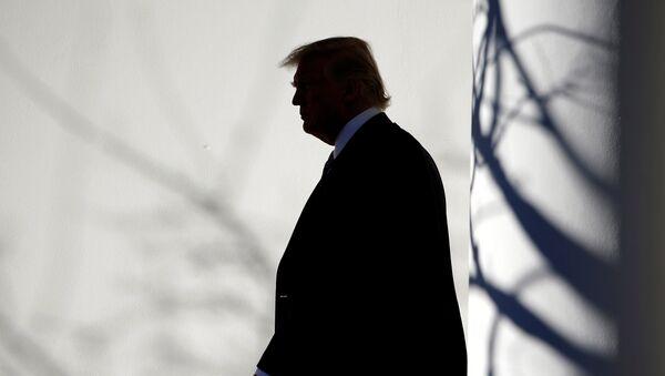 Tổng thống Hoa Kỳ Donald Trump đi bộ qua Đấu trường La Mã đến Phòng Bầu dục sau khi trở về Nhà Trắng ở Washington - Sputnik Việt Nam