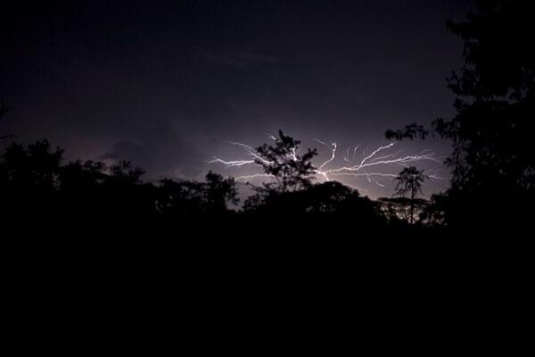 Sấm sét trên công viên quốc gia Sapo ở Liberia - Sputnik Việt Nam