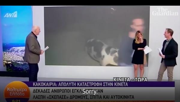 Một con lợn tấn công nhóm quay phim ngay trong khi truyền hình trực tiếp - Sputnik Việt Nam