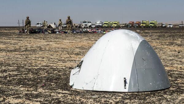 Phần mũi máy bay Airbus A321 của hãng Kogalymavia bị rơi ở bán đảo Sinai. - Sputnik Việt Nam