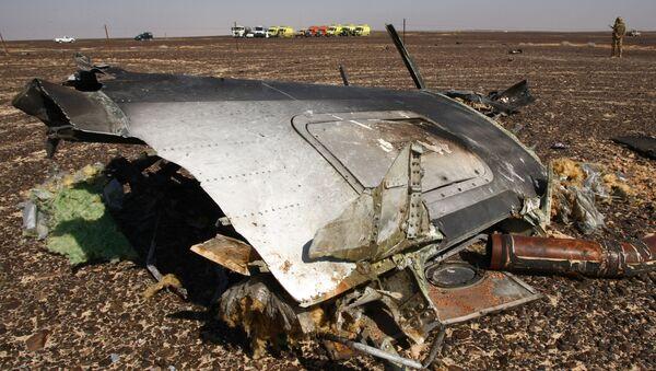 Đống đổ nát của chiếc máy bay bị rơi ở bán đảo Sinai - Sputnik Việt Nam