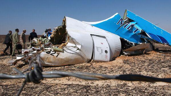 Mảnh vỡ máy bay Airbus A321 của hãng Kogalymavia, bay từ thành phố Sharm el Sheikh đến Saint Petersburg - Sputnik Việt Nam