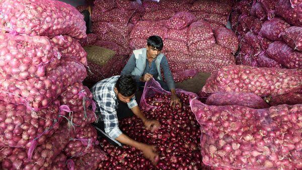 Sắp xếp hành tây tại một khu chợ ở thành phố Ahmedabad của Ấn Độ - Sputnik Việt Nam
