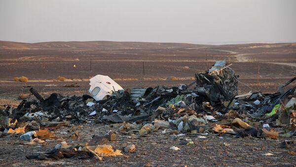 Công việc tìm kiếm ở hiện trường vụ tai nạn máy bay Airbus A321 của Nga tại Ai Cập - Sputnik Việt Nam