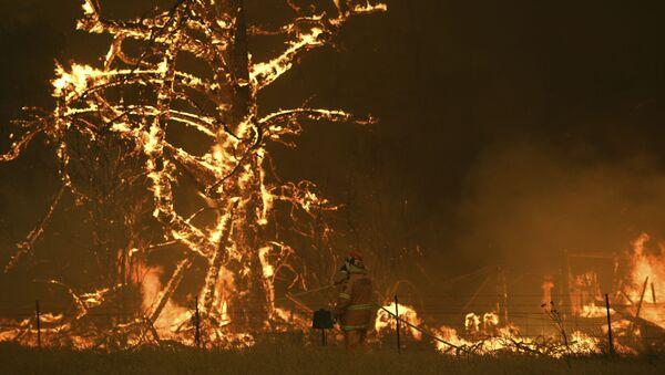 Lính cứu hỏa Úc chống cháy rừng ở khu vực thành phố Bilpin - Sputnik Việt Nam
