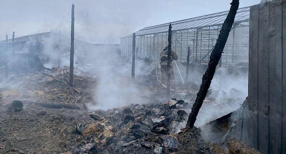 Công dân Việt Nam tử vong trong vụ cháy nhà kính ở ngoại ô Moskva