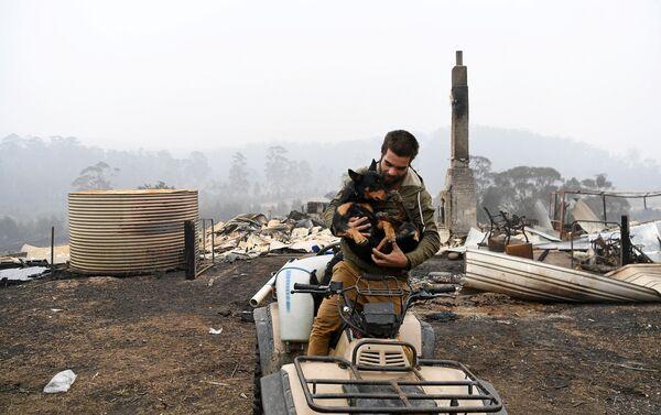 Người đàn ông với con chó trên nền cảnh ngôi nhà bị cháy ở Úc - Sputnik Việt Nam