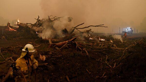 Đập lửa trong đám cháy rừng ở Úc - Sputnik Việt Nam