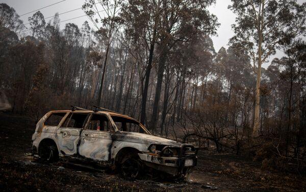 Hậu quả vụ cháy rừng ở Úc - Sputnik Việt Nam