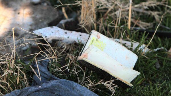 Vụ tai nạn máy bay Boeing 737-800 - Sputnik Việt Nam