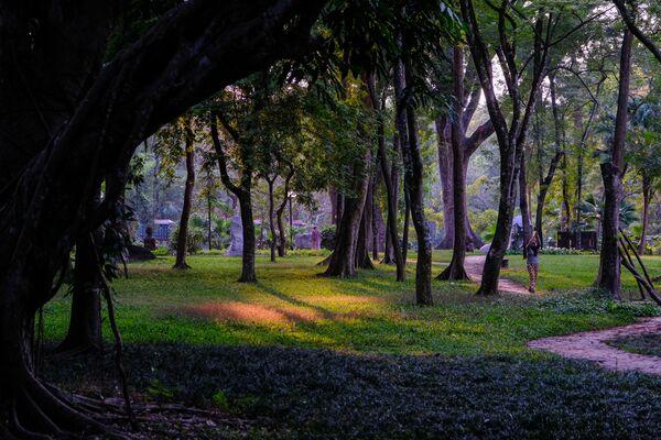 Vườn thực vật trên đảo Phú Quốc, Việt Nam - Sputnik Việt Nam