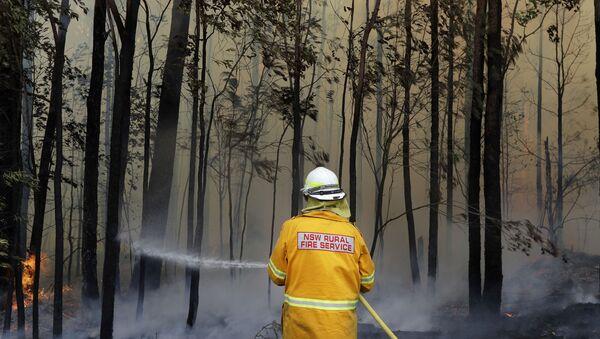 Dập cháy ở Úc - Sputnik Việt Nam