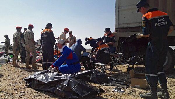 Công việc tìm kiếm ở hiện trường máy bay Nga Airbus A321 rơi tại Ai Cập - Sputnik Việt Nam