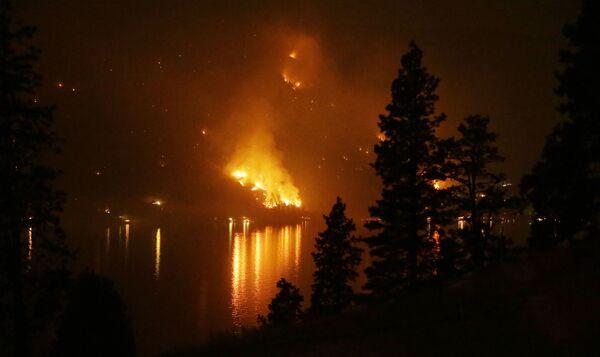 Cháy rừng ở bang Washington, năm 2015 - Sputnik Việt Nam