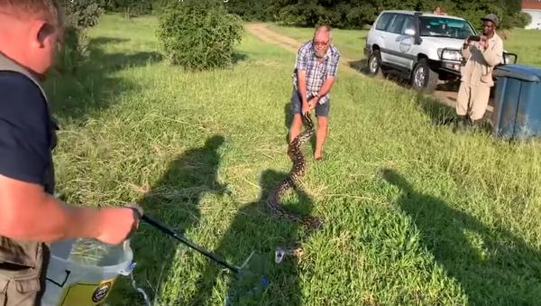 Con trăn tấn công hai người đàn ông ở Nam Phi - Sputnik Việt Nam