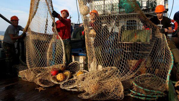 Ảnh lưu trữ của câu cá - Sputnik Việt Nam