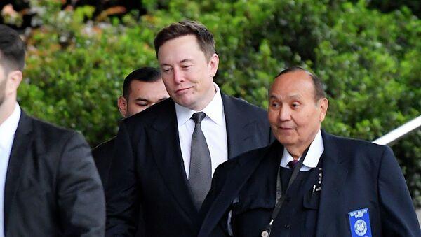 Tesla CEO Elon Musk - Sputnik Việt Nam