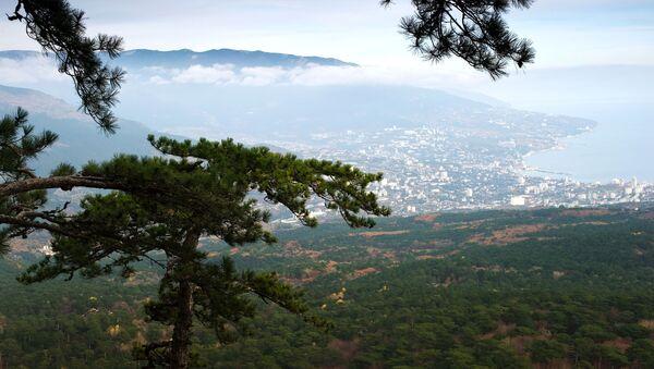 Cảnh núi và Yalta từ đường lên dãy Ai-Petri ở Crưm - Sputnik Việt Nam