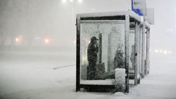 Mọi người chờ xe tại bến giao thông công cộng trong trận tuyết rơi ở Podolsk - Sputnik Việt Nam