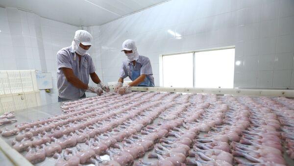 Dây chuyền chế biến thịt ếch xuất khẩu sang EU tại Công ty TNHH Tân Thành Lợi, tỉnh Long An. - Sputnik Việt Nam