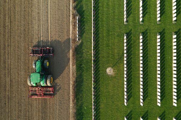 Nông dân Pháp chuẩn bị đất để gieo củ cải đường  - Sputnik Việt Nam